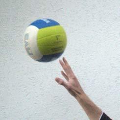 Beach volleyball cobra